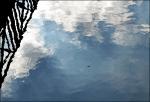 Wasserlaeufer